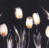 Succulent Tulips Fine-Art Print