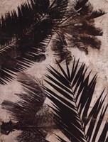 Palms II Fine-Art Print