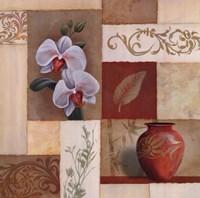 Mandarin Collage II Fine-Art Print