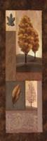 Mandarin Elements I Fine-Art Print