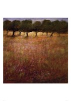 Orchard Fine-Art Print