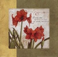 Garden Inspiration IV Fine-Art Print