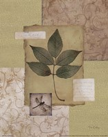 Leaf Collage II Fine-Art Print