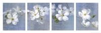 Blossom Panel Fine-Art Print