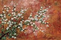 Wild Plum Blossoms Fine-Art Print