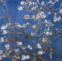 Blossoming Almond Tree, Saint-Remy, c.1890 Detail Fine-Art Print
