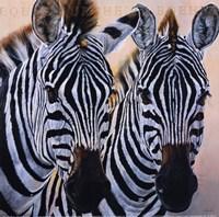 Zebres de Gol Fine-Art Print