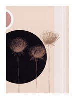 Three Dandelions on black circle Fine-Art Print