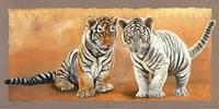 Oh my Sister! Ranthambore et Singalila Fine-Art Print