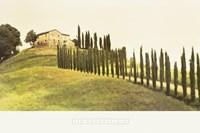 Tuscan Hills Fine-Art Print
