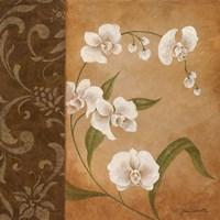 Orchid's Dance I Fine-Art Print
