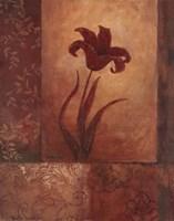 Lily Silhouette Fine-Art Print