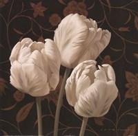 Flores Elegante II Fine-Art Print