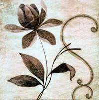 Floral Souvenir II Fine-Art Print