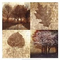 Arcadian Grove II Fine-Art Print