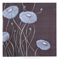 Springing Blossoms II Fine-Art Print