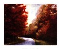 Maple Drive Fine-Art Print