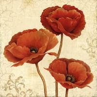 Poppy Bouquet II Fine-Art Print