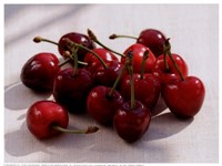 Morello Cherries II Fine-Art Print