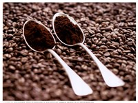 Roast And Ground Coffee Fine-Art Print