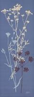 Teal Meadow Flower Fine-Art Print