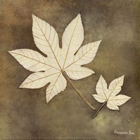 Maple Leaf Fine-Art Print