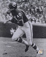 Gale Sayers - Running Fine-Art Print