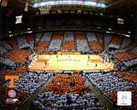 Thompson Bolling Arena - Univer. of Tennessee Fine-Art Print