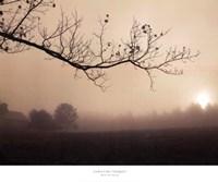 Parish Hill Sunrise Fine-Art Print