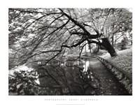Japanese Garden Fine-Art Print