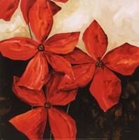 Red Passion I Fine-Art Print