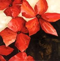 Red Passion II Fine-Art Print