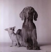 Max & Roxie Fine-Art Print