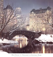 Twilight in Central Park Fine-Art Print