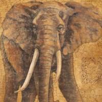 Grand Elephant Fine-Art Print