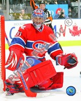 Carey Price 2009-10 Action Fine-Art Print