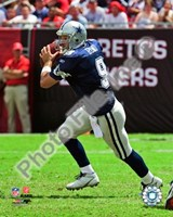 Tony Romo 2009 Action Fine-Art Print