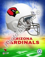 2009 Arizona Cardinals Team Logo Fine-Art Print