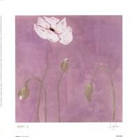 Poppy l Fine-Art Print