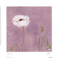 Poppy ll Fine-Art Print