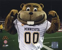 Mascot Goldy University of Minnesota Golden Gophers 2008 Fine-Art Print