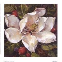 Magnolia Square ll Fine-Art Print