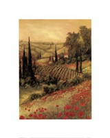 Toscano Valley I Fine-Art Print