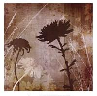 Floral B Fine-Art Print