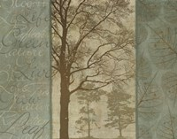 Natural Elements II Fine-Art Print