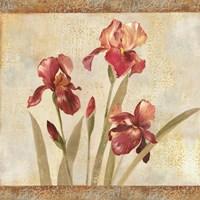 Iris Tapestry I Fine-Art Print