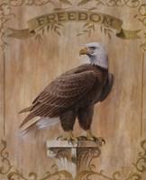 Eagle Freedom Fine-Art Print