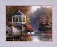 Swans in Parkscape Fine-Art Print