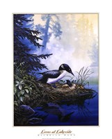 Loons at Lakeside Fine-Art Print