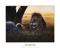 Serengeti Lion Fine-Art Print